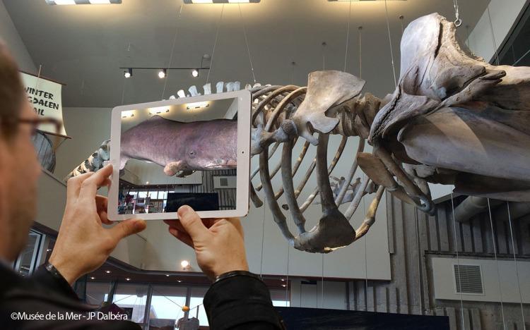Google Tango Musée de la Mer